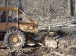Für die Holzrückung steht uns ein Seilzugschlepper LKT 81 Turbo zur Verfügung (auch Knickschlepper genannt)